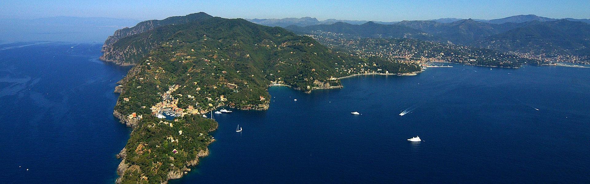 DG Portofino
